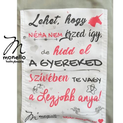 CapaLegjobbanya_Monello_Taska(2)